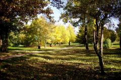Herbstimpressionen Beate Koppri