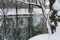 Winterbilder 2011